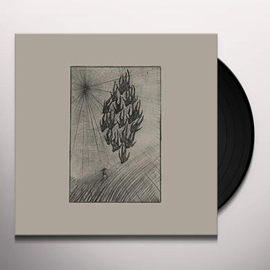 Aine O'Dwyer LOCUSTS Vinyl Record