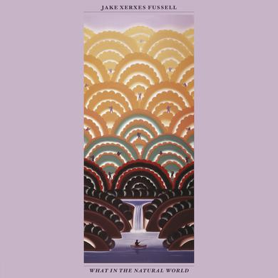 Jake Xerxes Fussell WHAT IN THE NATURAL WORLD Vinyl Record