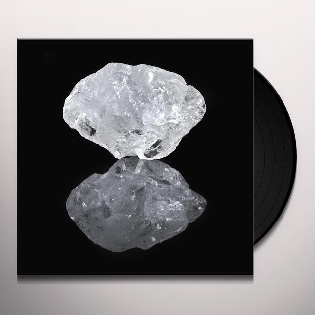 Saltland COMMON TRUTH Vinyl Record