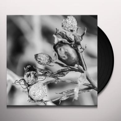 Bona Fide WIEK Vinyl Record