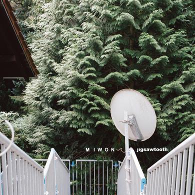 Miwon JIGSAWTOOTH Vinyl Record