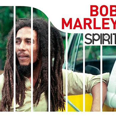 SPIRIT OF BOB MARLEY Vinyl Record