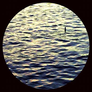 ANT ORANGE RIGHT THERE Vinyl Record