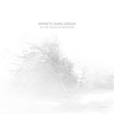 Kenneth James Gibson IN THE FIELDS OF NOTHING Vinyl Record