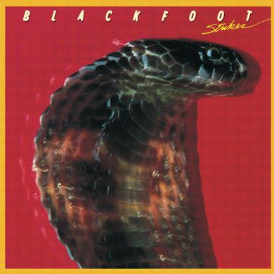 Blackfoot STRIKES Vinyl Record