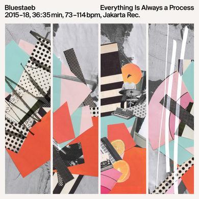 Bluestaeb EVERYTHING IS ALWAYS A PROCESS Vinyl Record
