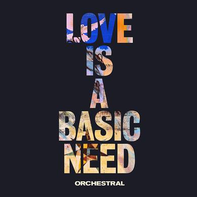 Embrace LOVE IS A BASIC NEED (ORCHESTRAL) Vinyl Record