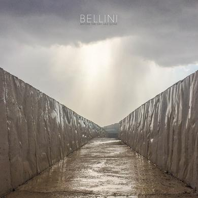 Bellini BEFORE THE DAY HAS GONE Vinyl Record