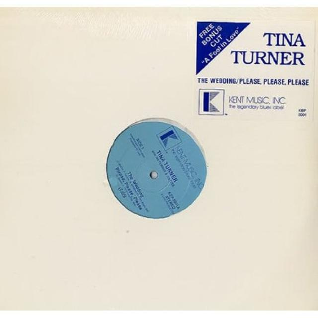 Tina Turner WEDDING/PLEASE PLEASE PLEASE / A FOOL IN LOVE Vinyl Record