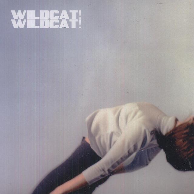 Wildcat Wildcat