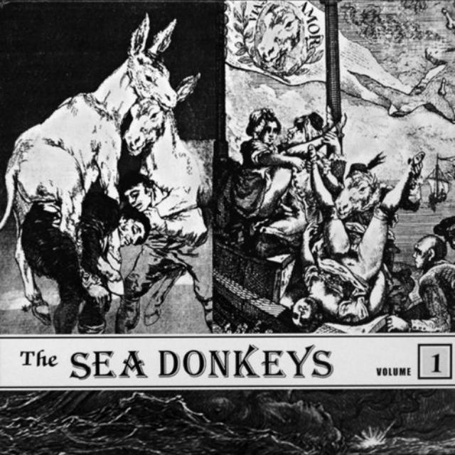 Sea Donkeys