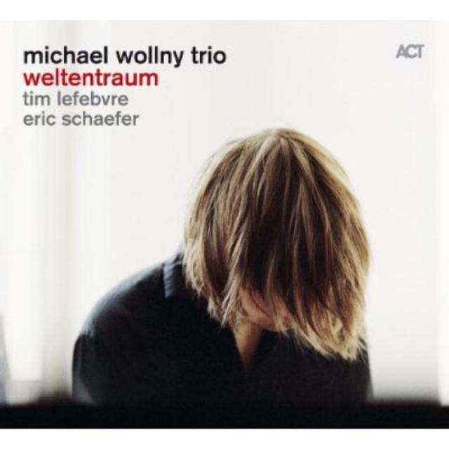 Michael Trio Wollny