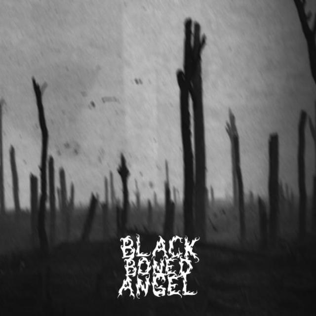 Black Boned Angel