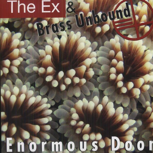 Ex & Brass Unbound