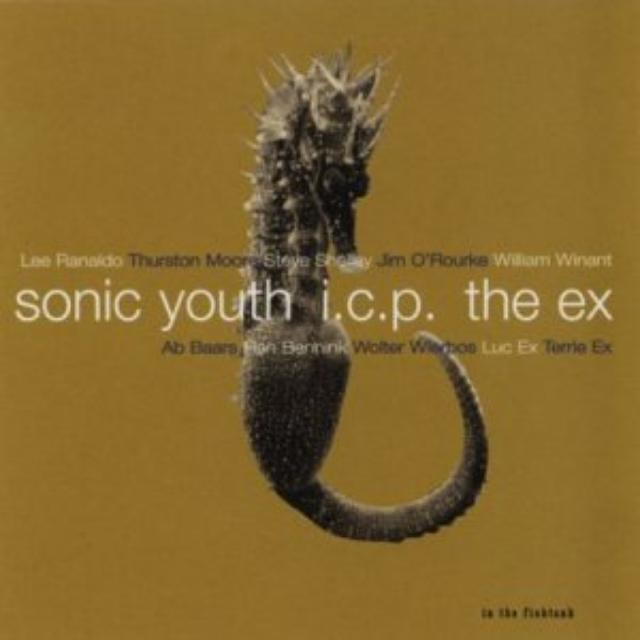 Sonic Youth / I.C.P. / The Ex