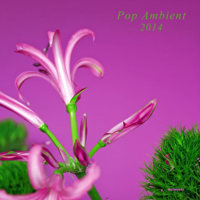 Pop Ambient 2014 / Various