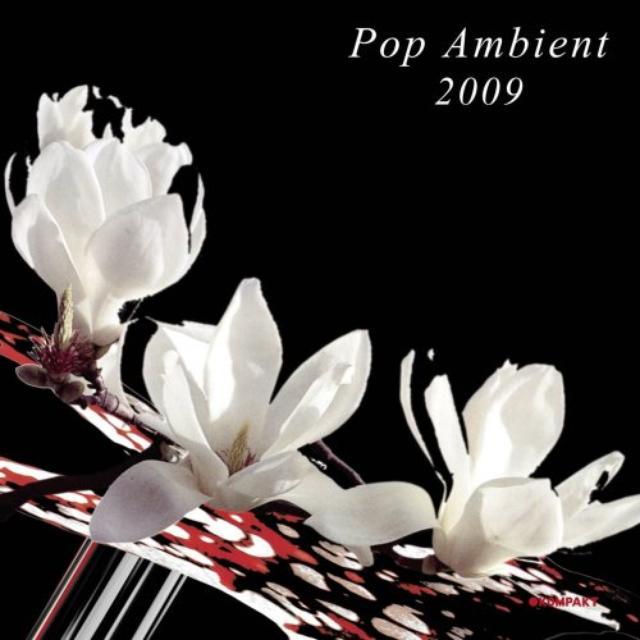 Pop Ambient 2009 / Various