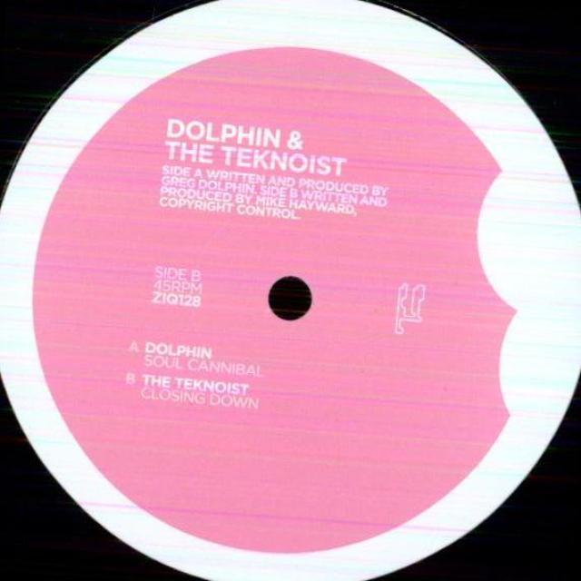 DOLPHIN & TEKNOIST Vinyl Record
