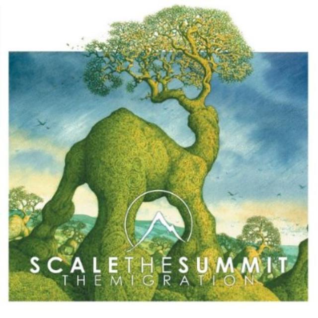 Scale Them Summit