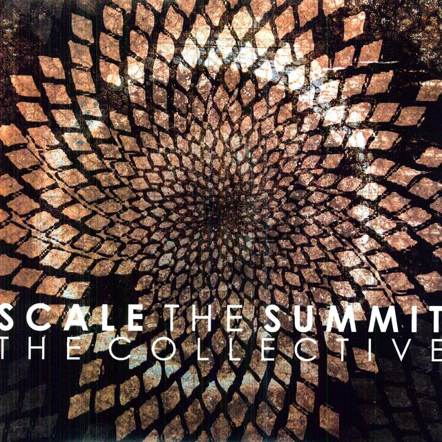 Scale The Summit