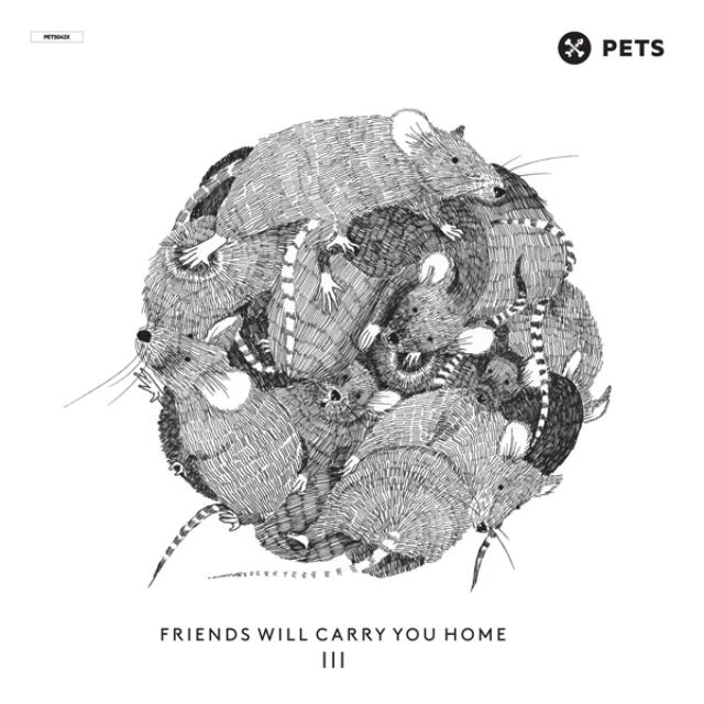 Friends Will Carry You Home 3 / Various