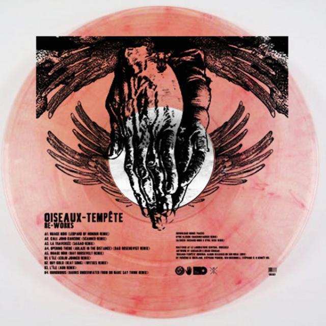 Oiseaux-Tempete