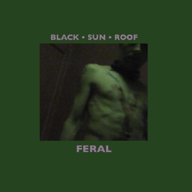 Black Sun Roof