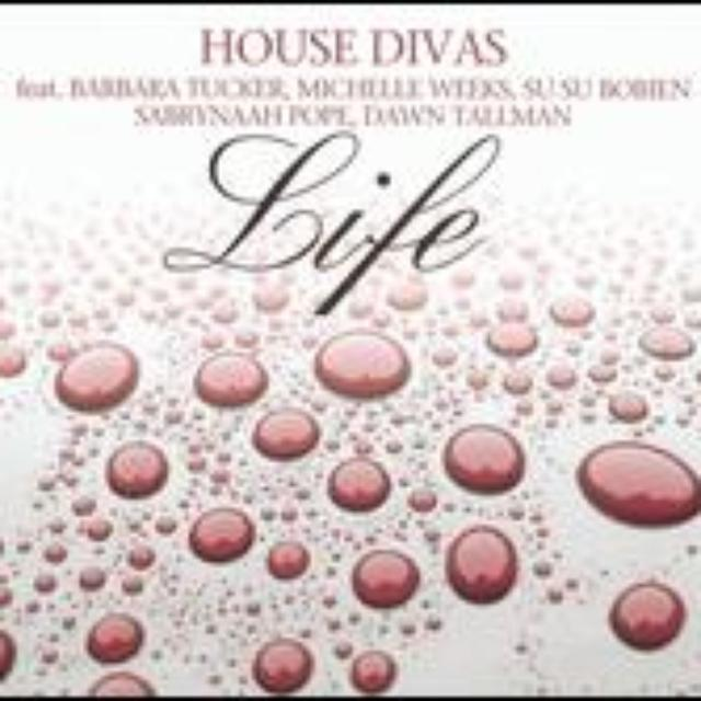 House Divas LIFE Vinyl Record