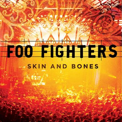 Foo Fighters Skin & Bones Vinyl