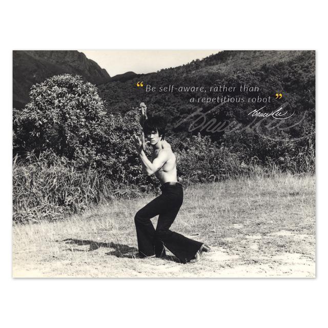 Bruce Lee Self Aware Poster