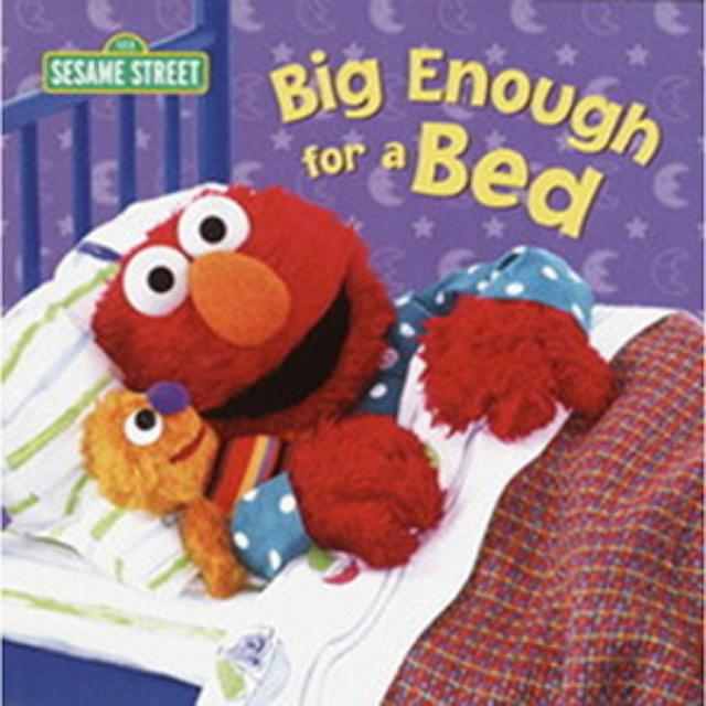 Sesame Street Big Enough For A Bed Book