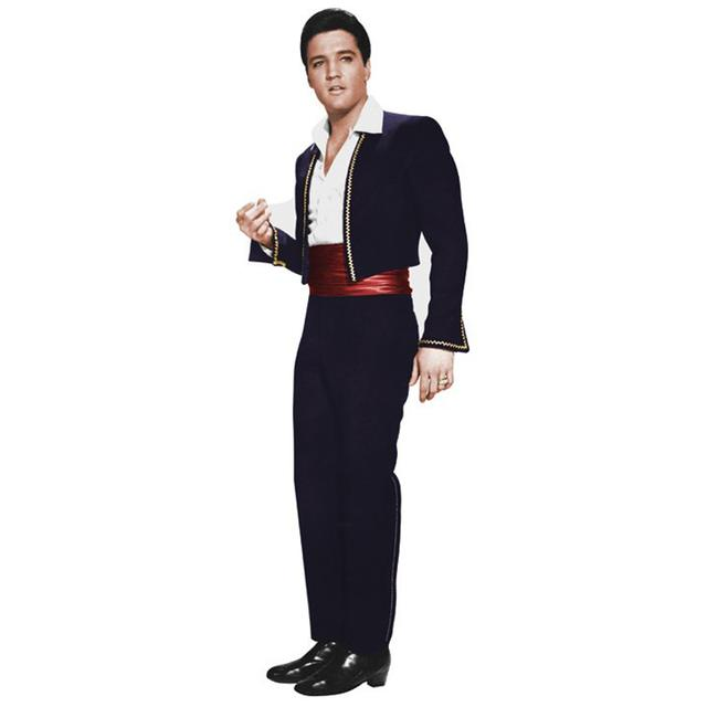 Elvis Presley Fun in Acapulco Wall Sticker