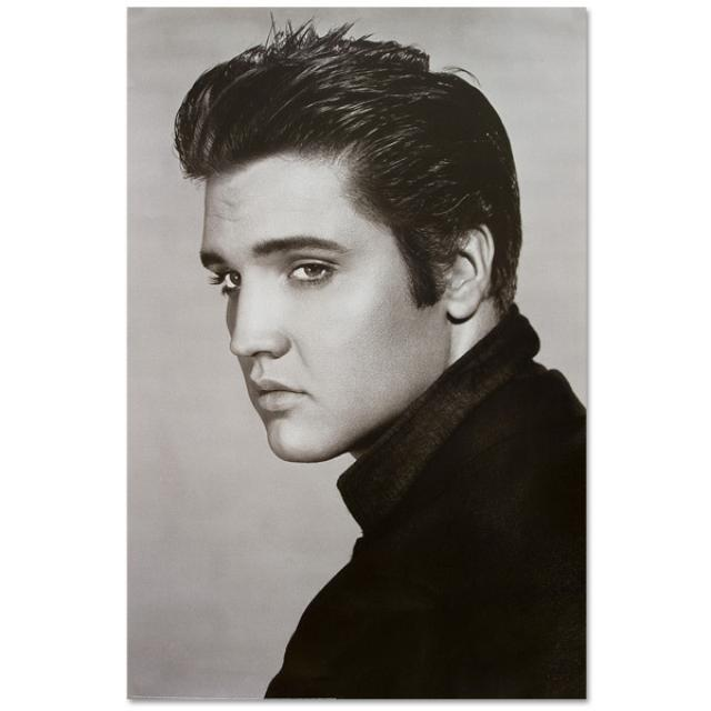 Elvis Loving You Poster