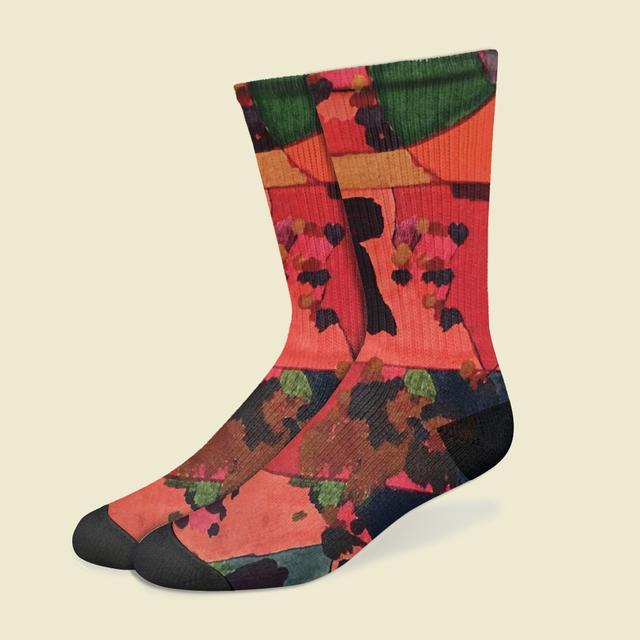 JENNYLEE Jenny Lee Painting Socks