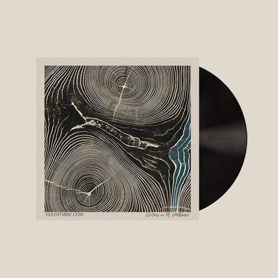 Needtobreathe Rivers In the Wasteland (Vinyl)