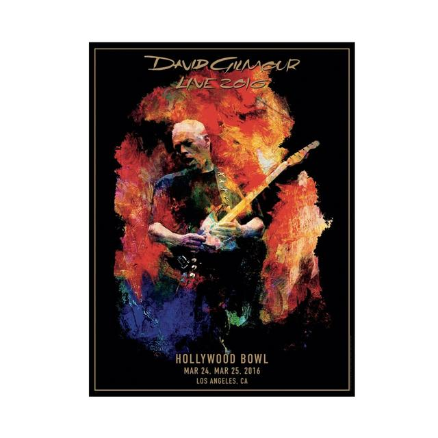 David Gilmour Live 2016 Hollywood Bowl Lithograph