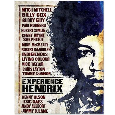 Jimi Hendrix Experience Hendrix DVD