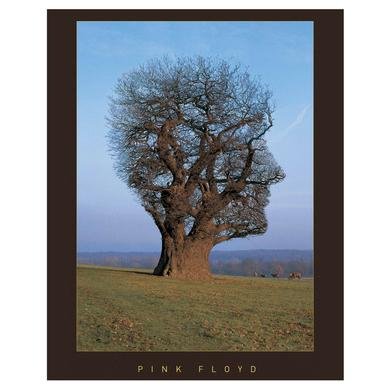 Pink Floyd Limited Edition Tree Of Half-Life Art Print