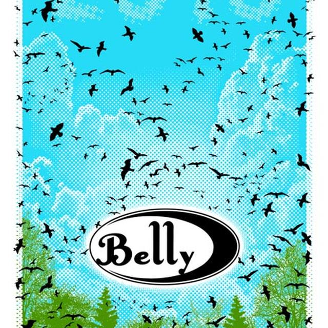 Belly The Birds 2016 Tour Poster
