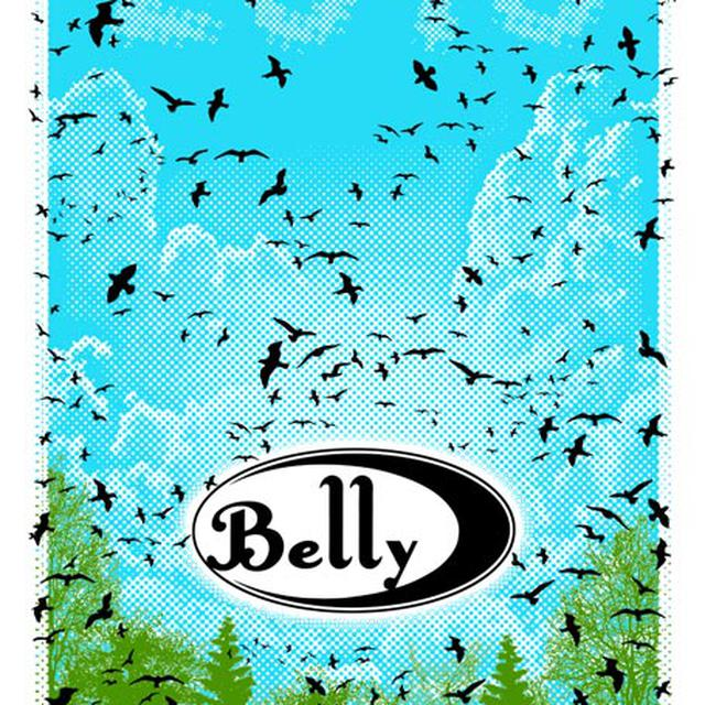 Belly Sky Birds Signed 2016 Tour Poster