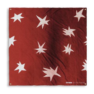 Citizen AS YOU PLEASE WALL FLAG