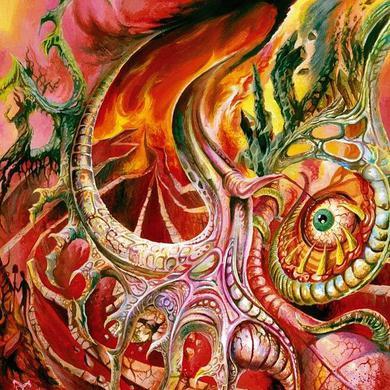 Morbus Chron 'Sleepers In The Rift' Vinyl LP Vinyl Record