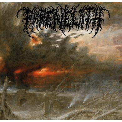 Phrenelith 'Desolate Endscape' Vinyl LP Vinyl Record