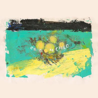 Big Ups 'Eighteen Hours Of Static' Vinyl Record