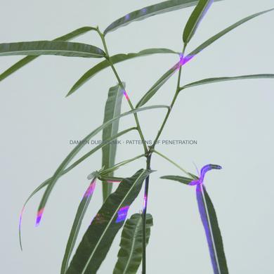 Damien Dubrovnik 'Patterns of Penetration' Vinyl Record
