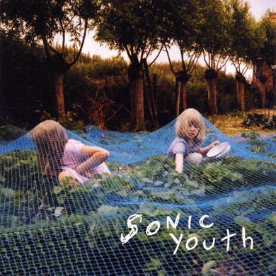 Sonic Youth ‎'Murray Street' Vinyl Record