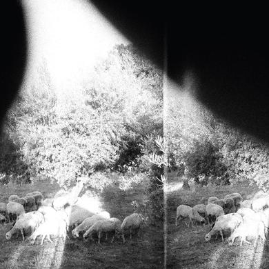 Godspeed You! Black Emperor 'Asunder, Sweet And Other Distress' Vinyl Record