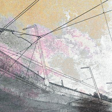 Reinier Van Houdt 'Paths Of The Errant Gaze' Vinyl Record