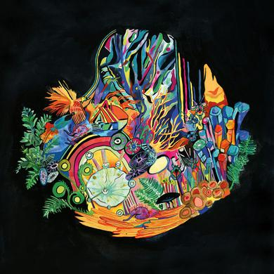 Kaitlyn Aurelia Smith 'Ears' Vinyl Record