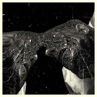 Secret Boyfriend 'Memory Care Unit' Vinyl Record